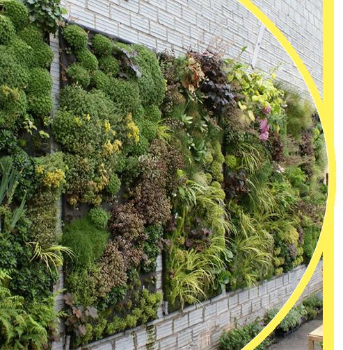 اجرای دیوار سبز ویلا