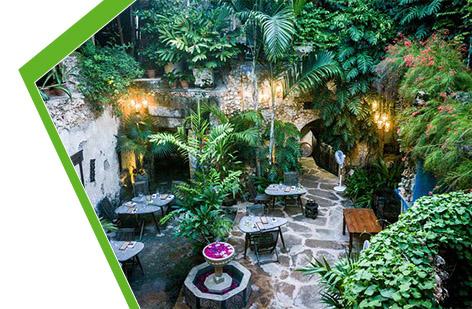 پوشش گیاهی باغ