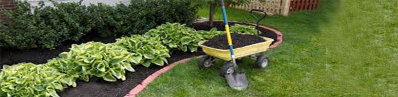 نگهداری طراحی فضای سبز