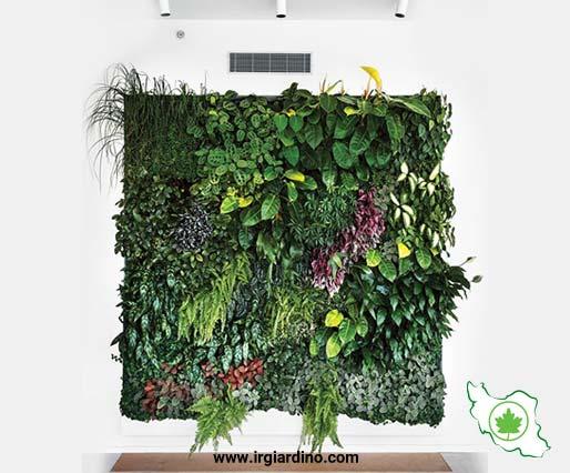 اجرای دیوار سبز
