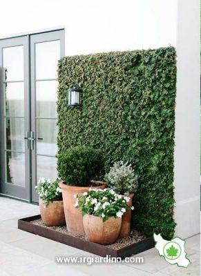 دیوار سبز بالکن