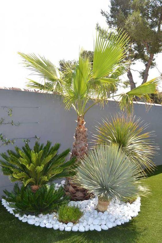 طراحی درختان