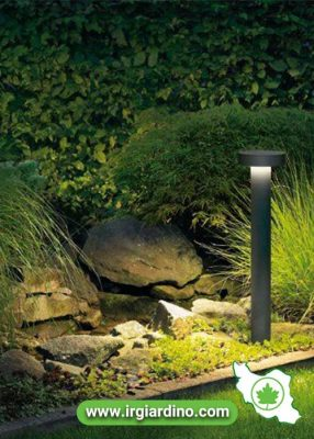 نور رنگی طراحی فضای سبز